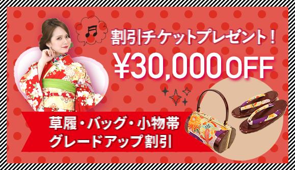 30,000円OFF割引チケット